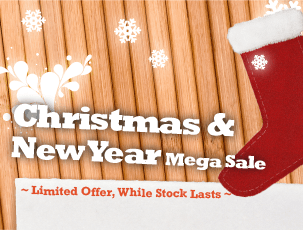 Christmas & New Year Mega Sale 2011